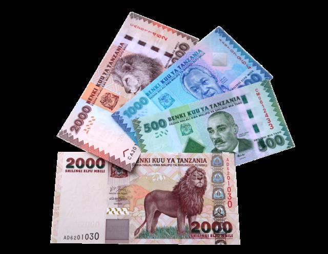 Tanzania shillings