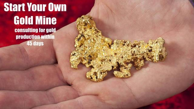 Start Your Own Gold Mine