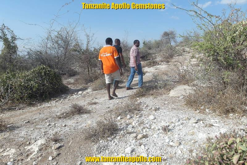 Geological survey on potential Tanzanite mining site