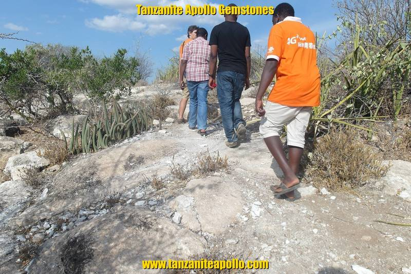 Geological survey on potential mining site
