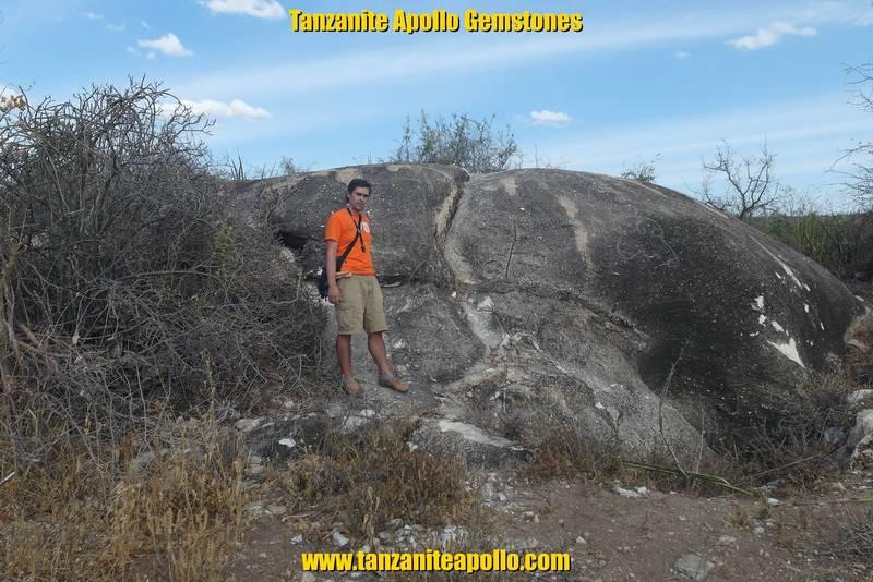 Huge boulder of dolomitic marble