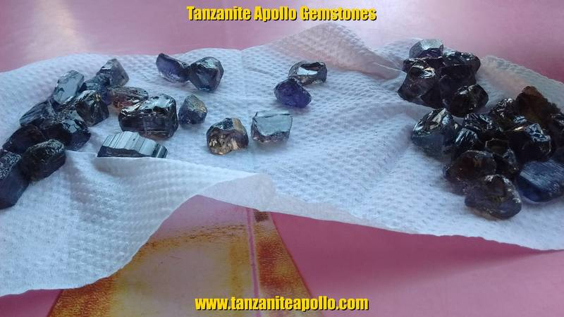 High quality rough Tanzanite gemstones on the table during the selection