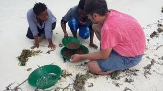 Teaching staff gold prospecting in Zanzibar